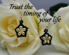 Trust the timing of your life aylake quote