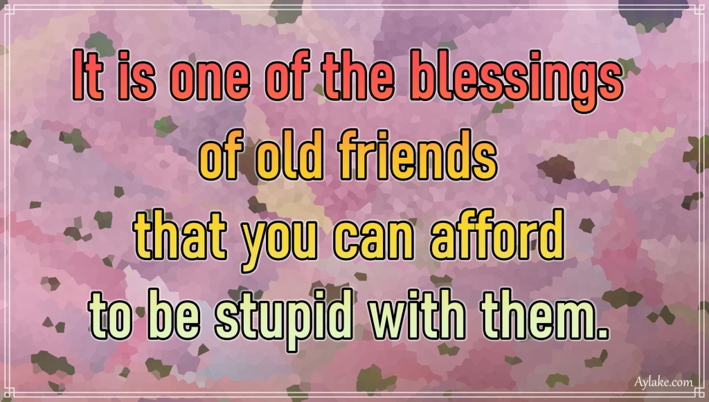 Funny quotes It is one of the blessings of old friends that you can afford to be stupid with them Aylake