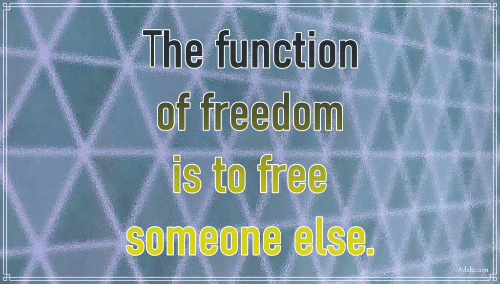 Powerful quotes The function of freedom is to free someone else Aylake